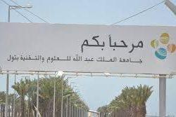 ملتقى القاهرة لفن الخط العربي في دورة ثالثة لـ «جني الثمار»