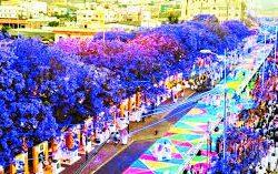 """شارع الفن  في ابها يتغطى ب """"ألوان الورد"""" ويطلق مسرحًا مفتوحًا"""