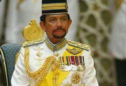 سلطان بروناي السلطان الذي يمتلك مزرعة أكبر من سلطنته في الذكرى 50