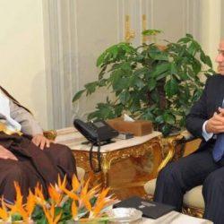 الامير سلطان بن سلمان قابل الرئيس السيسي ويزور الاثار المصرية