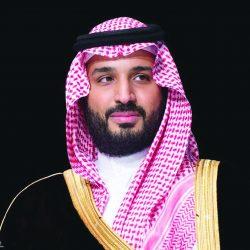 """ينظمها مجلس الغرف السعودية وتبدأ من الطائف وحائل 4 ورش عمل  مهنتي بيدي"""" لتوعية وتوطين قطاع التجميل"""