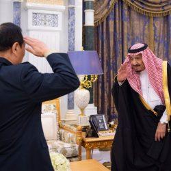 50 صقراً للتوصيل السريع في الإمارات والسعودية..آخر صيحات خدمة الزبائن