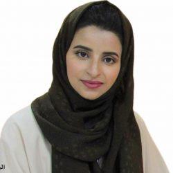 تحولات محتملة في القطاع الحكومي والخاص لتمكين الاقتصاد السعودي