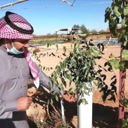 مجلس الشورى يدرس معوقات أداء وزارة الخارجية