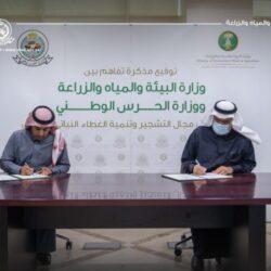 منصة» حكومية رقمية لجذب شركات الاستثمار الأجنبية إلى السعودية تقديم حوافز للمنشآت الدولية التي تنقل مقراتها الإقليمية الرئيسية إلى الرياض