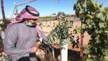 سعودي يزرع نباتات نادرة لأول مرة بشمال المملكة