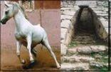 كشوف اثرية تظهر ان اوغاريت مركز للخيول العربية.